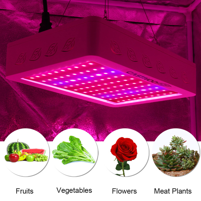 castnoo 500w full spectrum high yield led grow light best for indoor plants grow and flower