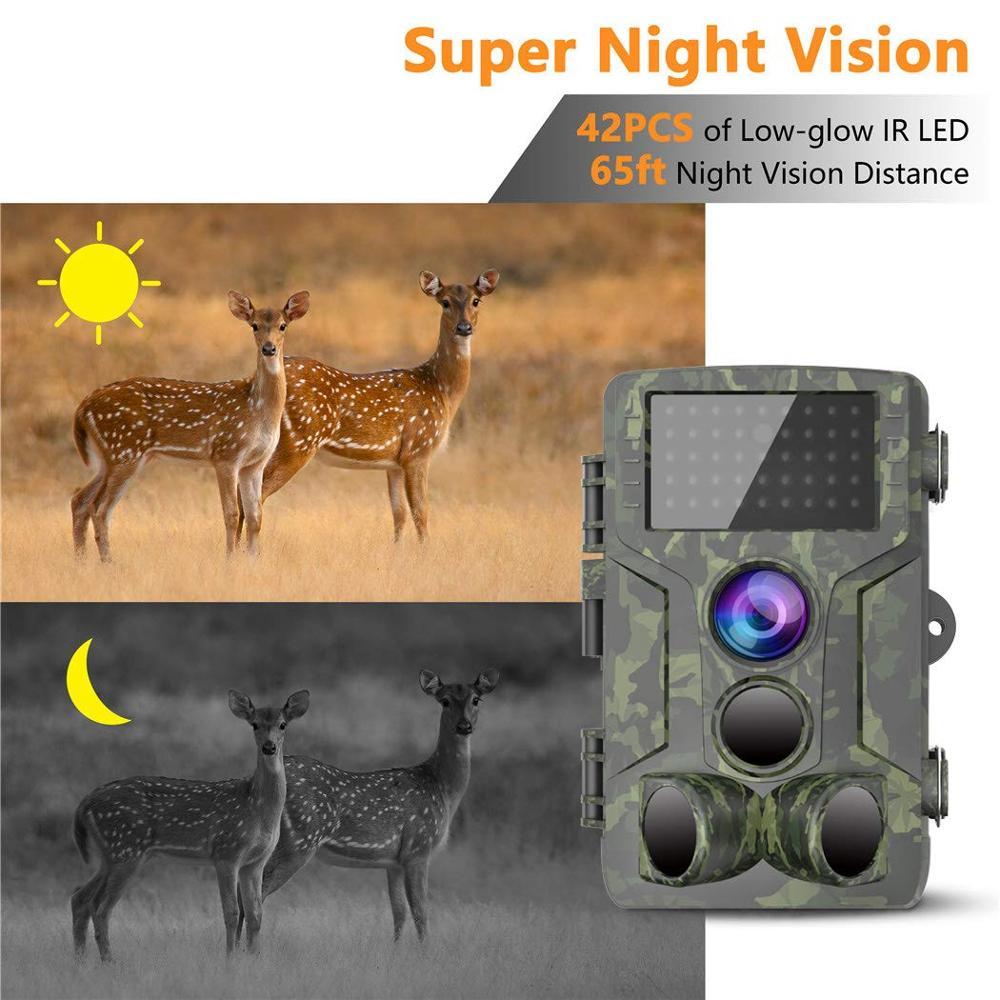 Chasse Trail caméra étanche Vision nocturne caméra sauvage caméra forêt Animal Photo pièges Scout chasse caméra HC 800A - 2