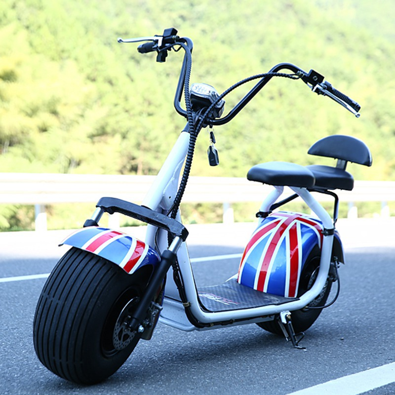 electric skateboard 2 wheel harley scooter 1000W hub motor powerful moped