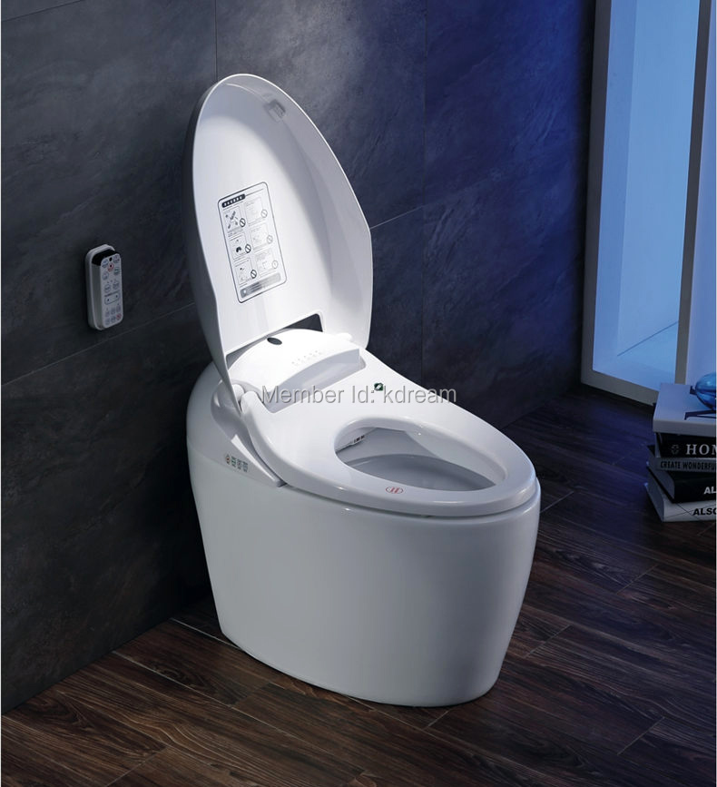New Style Built In Bidet Electronic Water Saving W C Automatic Smart