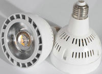 20W 30W 40W E27 PAR30 LED Bulb lamp AC85 265V Warm White/white LED spot light, PAR30 E27 LED lighting,