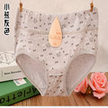 Plus Size Panty Underpants Sexy Lingerie Underwear Knicker Panties Women's Cotton Briefs Hot