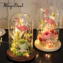 MagiDeal стеклянный купол Клош с деревянной основой цветок пейзаж держатель стекло Крышка черный для дня рождения Хэллоуин свадебные украшения