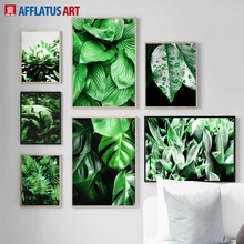 Tropical Green Plant Monstera Big Leaves Wall Art Canvas Painting Nordic Posters And Prints Pictures For Living Room Decor