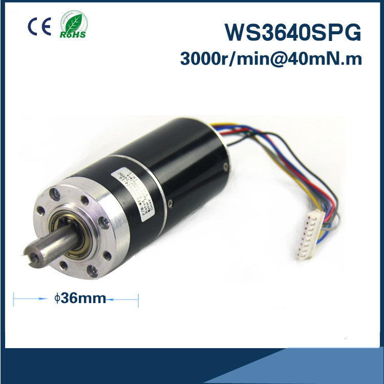 12v or 24v 36mm * 40mm DC Gear Motor Customized micro brushless dc planetary gear reduction motor Gear box motor high quality z5d40 24gn 5gn100k dc motor 40w 3000rpm 24v 2 6a micro dc gear motors dc brush gear motor dc motor hot selling