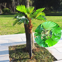 Large 1.45m Latex 1 Trunk Artificial Plant Tree Fan Leaf Coconut Palm Fake Tree Outdoor Wedding Home Decoration No Pot