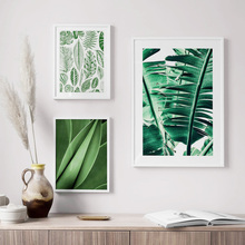 Wall Art Canvas Painting Fresh Green Banana Leaf Tropical Plants Nordic Posters And Prints Decor Wall Pictures For Living Room цена