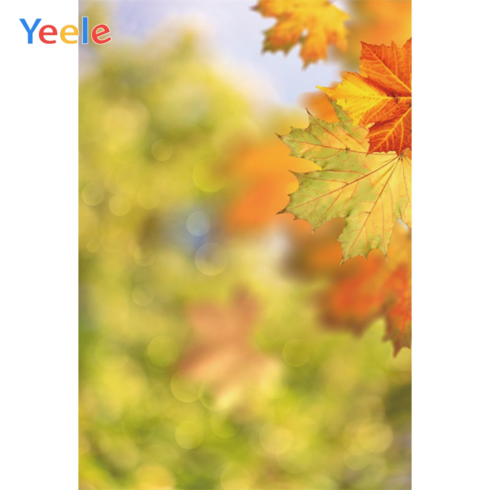 Yeele Green Leaves Light Bokeh Virtual Focus Scenery Photography Background Personalized Photographic Backdrops For Photo Studio in Background from Consumer Electronics