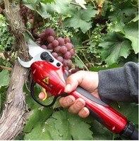 Электрический инструмент для подрезки ветвей Сад Scissor дерево секатор садовые ножницы (полный набор ножницы для сада и сады) SCA1