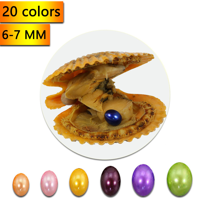 6 7mm Rice Akoya Pearls in Red Oysters Vacuum Packing Saltwater Scallop Oyster Mix 20 Colors