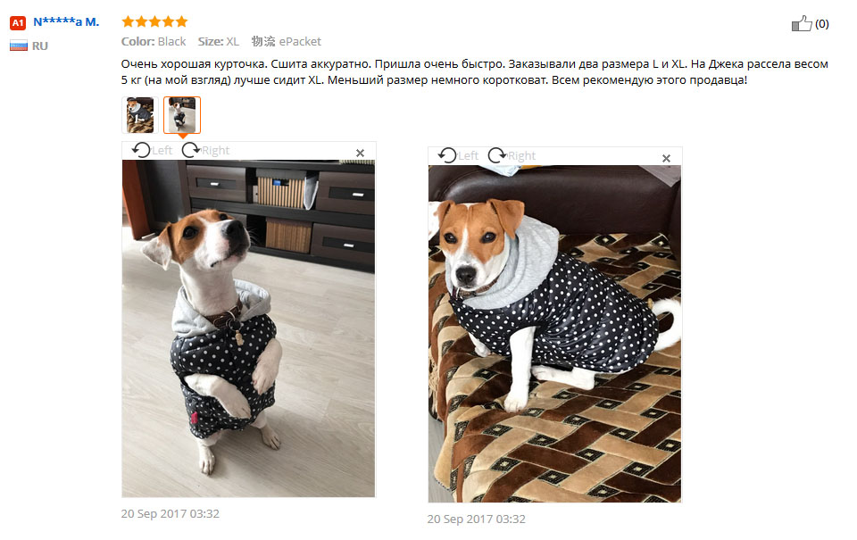 winter dog clothes 2