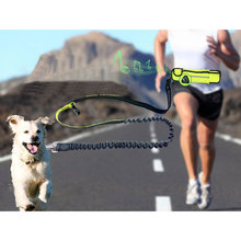 Fashionable Waterproof Sport Pocket Leads Pet Dog Running Leash Reflective Hands Free Dog Leash Pet Elastic Traction Rope