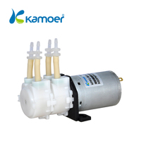 Kamoer KPP2 24V DC Double Head Mini Peristaltic Pump Electric Water Pump