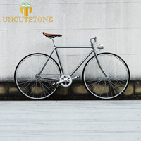 Retro Steel frame sliver 700C Fixed Gear bike Track Single speed Bike 48cm 52cm fixie bike vintage DIY frame