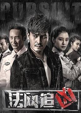 《法网追凶》2018年中国大陆犯罪,悬疑电视剧在线观看