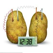 Часы картофель электрохимический клеточный эксперимент материал, Забавный домашний школьный зеленый научный набор обучающий DIY материал