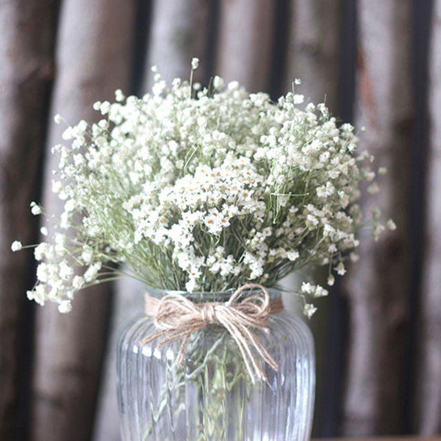One Bunch Babys Breath White Flower Natural Dried Flowers Home
