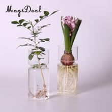 MagiDeal ברור יקינתון זכוכית אגרטל Creative פרח עציץ סיר DIY חממה מיכל דקור אמנות מתנת עיצוב הבית