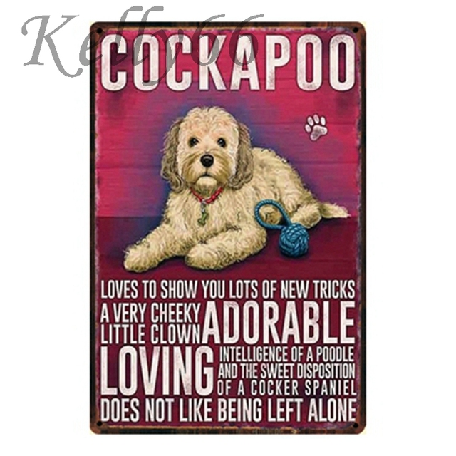 Cockapoo Tin Sign Iron Painting 2030 Cm Size