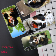 Silicone Phone Case Fashion Bernese Mountain Dog Printing for iPhone XS XR Max X 8 7 6 6S Plus 5 5S SE Matte Cover