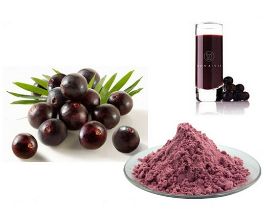New Arrival High Quality Acai Berry Powder Free shipping