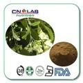 100% Natural Piper methysticum/Kava extrato da raiz de 1 kg frete grátis