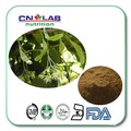 100% Natural Piper methysticum/Kava root extract 1kg free shipping