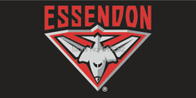 AFL Essendon Bombers Flag 3×5 FT 150X90CM Banner 100D Polyester flag 2005, free shipping