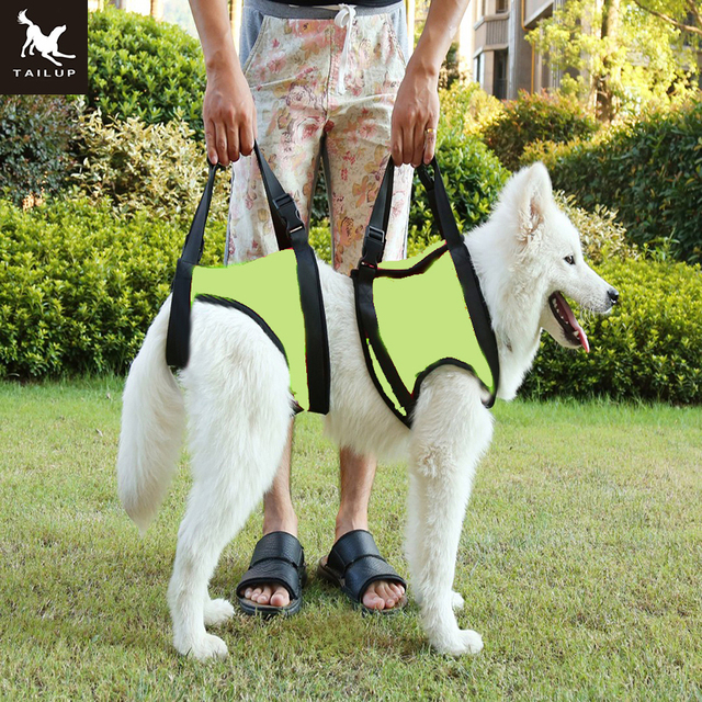 TAILUP New Arrival Front Rear Type Dog Lift Harness Elderly Sick Dog K9 Canine Aid With_640x640 tailup new arrival front rear type dog lift harness elderly sick dog