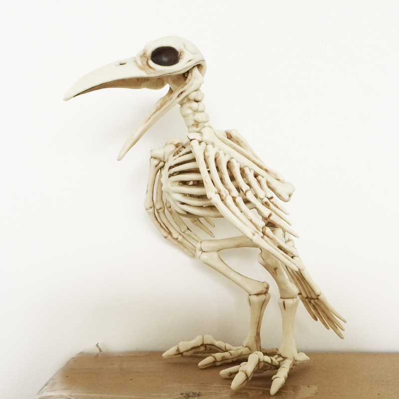 Skeleton Raven100% Plastične živalske skeletne kosti za Horror Halloween Decoration