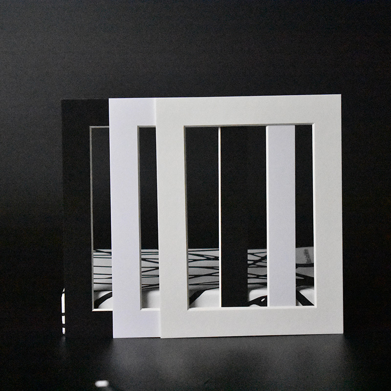Buy HAOTUO Photo Frame Bevel Cut Paper Photo Mounts for 8X12\