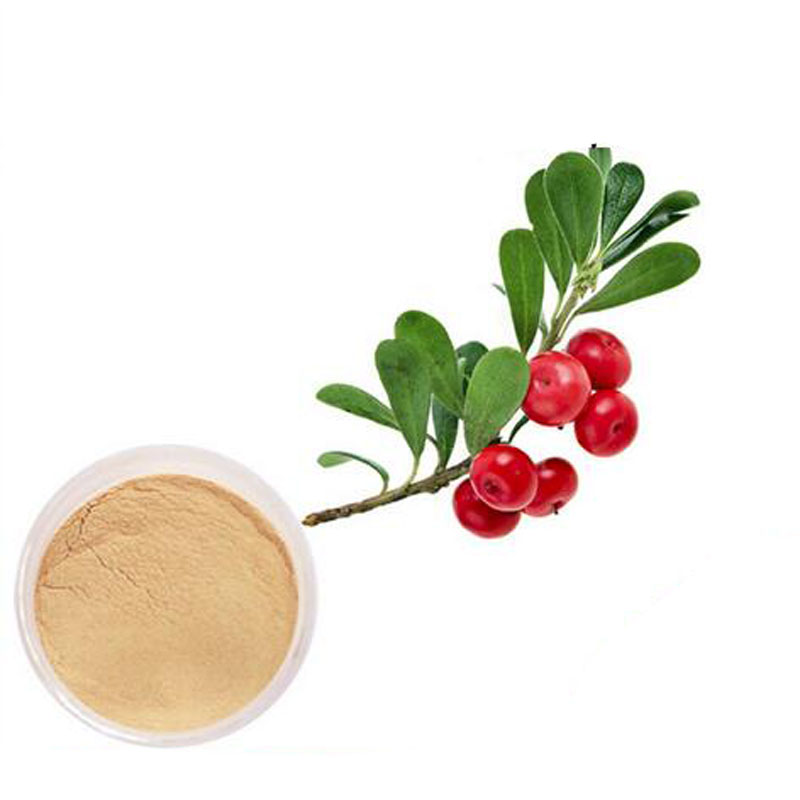 pure natural Alpha Arbutin,alpha arbutin powder,bearberry extract 1000g 1000g 10 1 hairyvein agrimony extract