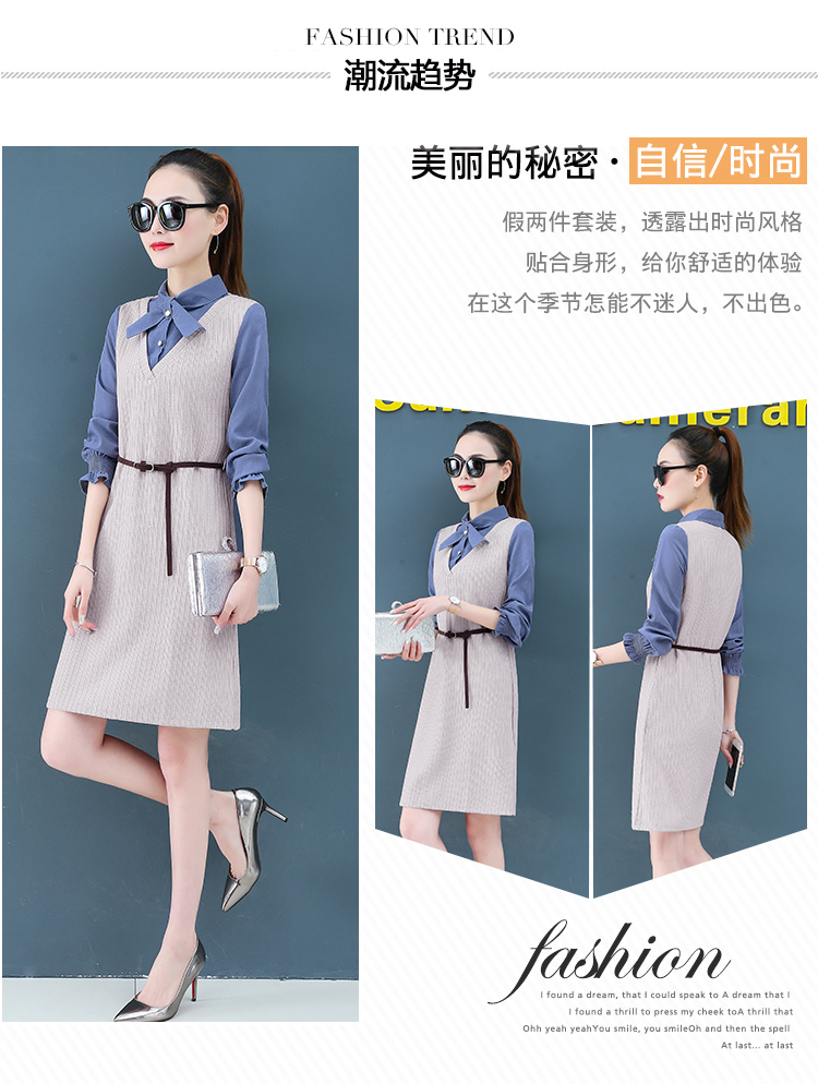 Render a dress in female new spring in the spring and autumn qiu dong fake two piece suit dress long 6