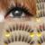 Falso Eye Lashes Ferramentas Extensões de Pestanas Falsas Naturais Cílios Maquiagem Volume 3d Cílios Transparente Maquiagem Para Profissionais