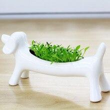 New White Ceramic Animal Flower Plant Pot Ornaments Small Potted Flowerpot Succulents Micro Mini Desktop Landscape