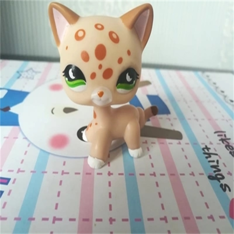 Pet Shop Animal Doll LPS Figure For Child Toy Boy and Gril Short Hair Cat With Glasses for Gift