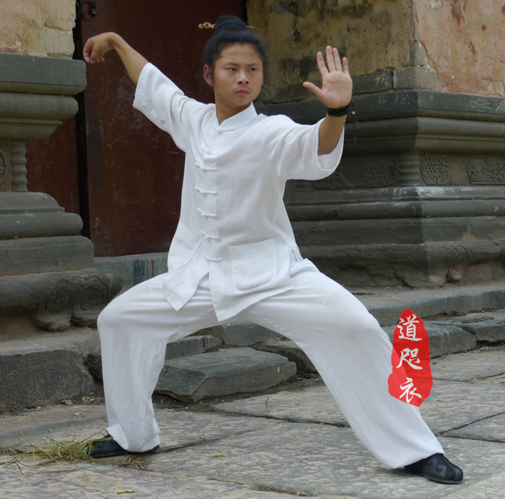 White Linen Chinese Men Tai Chi Clothing Short Sleeve Kung fu Uniforms Martial arts Wushu Performance Clothing Master's clothes autumn and winter thick linen kung fu clothes chinese men and women style tai chi uniforms tai chi martial arts wudang clothing