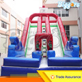 Commercial Use Dual Lane Inflatable Water Slide For Kids With High Digital Printing