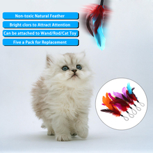 5PCS Pet Cat Toy Natural Long Feather Pet Kitten Cat Teaser Replacement Refill Feather for Cat Rod Wand katten speelgoed