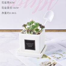 лучшая цена Succulents Mini Simulation Plant Potted Artificial Green Plants Bonsai Fake Flower Garden Ornaments Home Balcony Decoration