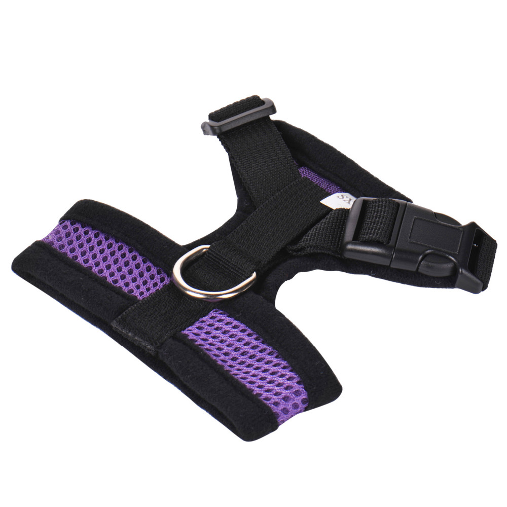 DY103-Purple (3)