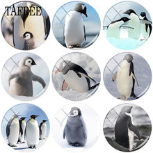 TAFREE Black And White Animal Penguin Clip Art Picture 25mm DIY Glass Cabochon Dome For Keychain Necklaces Jewelry Findings(China)