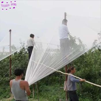 1PC 80 metrów kwadratowych siatka przeciw ptakom siatka nylonowa drzewo owocowe sad ptak dowód gospodarstwa domowego balkon rolnictwo chronić zwalczanie szkodników tanie i dobre opinie