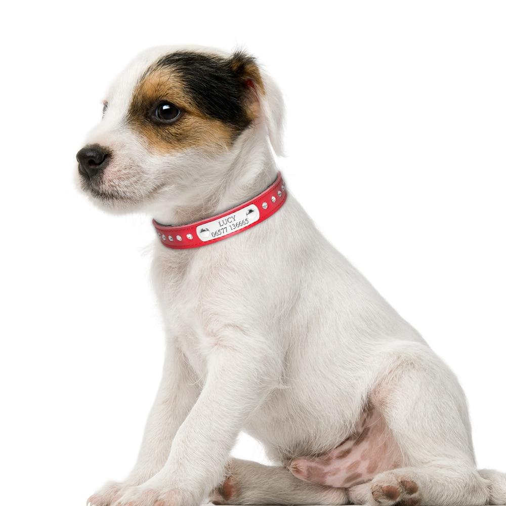 HTB1wsKxEYuWBuNjSszgq6z8jVXa9 - Halsband met naam en telefoonnummer hond of kat leer steentjes
