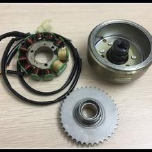 Мотоцикл Магнитный двигатель катушка Зажигания DD150 DD250 CBT250 CA250 ATV250 обмотки статора Ротора 253FMM Двойной цилиндр