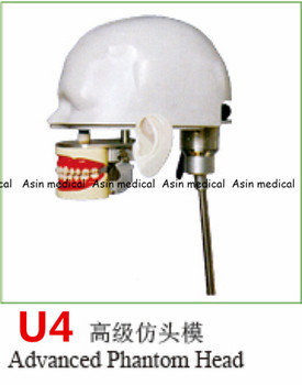 High Quality advanced phantom head Apply to dental simulation training of teeth scaling handpiece positioning taking impressions