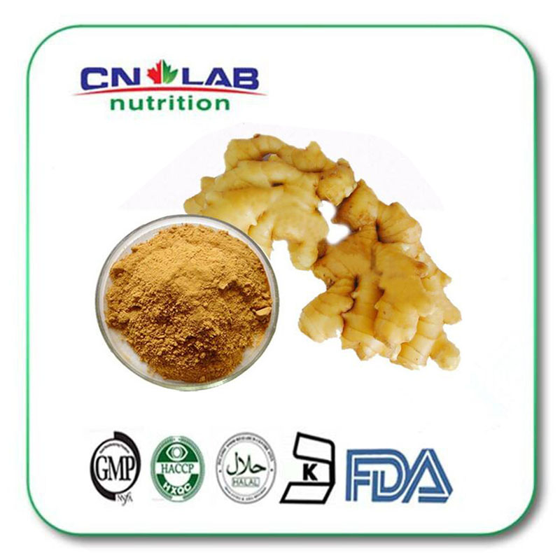 Ginger root extract powder with Gingerols 5% 1kg/lot tremella fuciformis extract polysaccharides 10 1 powder 100g lot