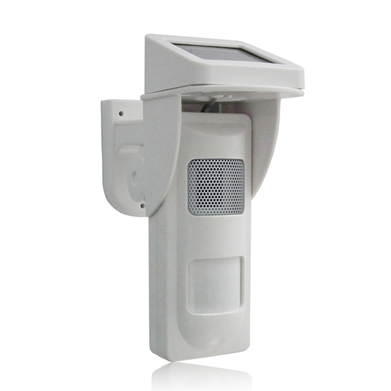 Motion Sensor Sound Solar Promotion Shop for Promotional Motion