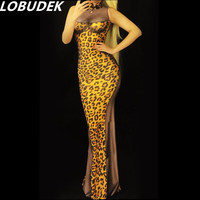 Female Leopard Print Dress Party Prom Outfit Costumes Sexy One Piece Dress DJ DS Show Singer