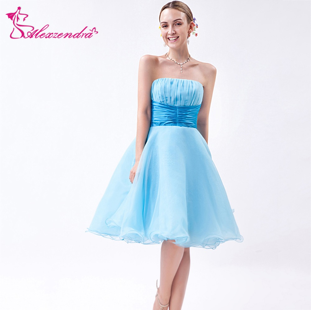 Alexzendra Light Blue Strapless Organza A Line Mini Short   Prom     Dresses   2018 Party   Dresses   Plus Size